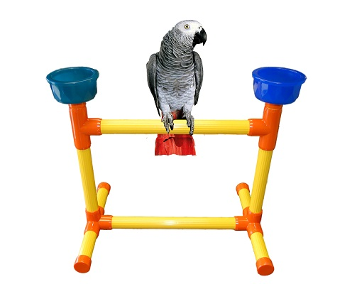 Table Top Perch Medium Playgyms Perches Stands Discontinued Items One Of A Kind Pvc Bird Toy Man